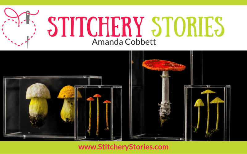 Amanda Cobbett Stitchery Stories Textile Art Podcast Wide Art